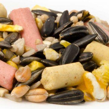 Premium Ströfoder läckerbitar