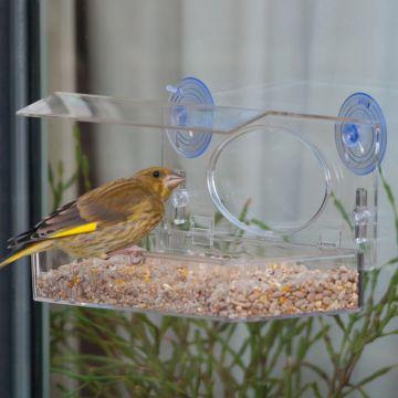 Fågelbord för fönster Rhodos