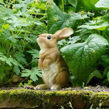 Kanin staty (stående på bakbenen)
