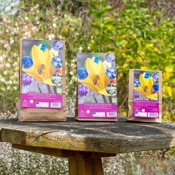 Blandade blomsterlökar för bin och fjärilar