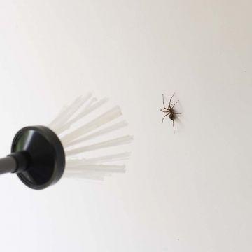 Insektsfångare BugAway