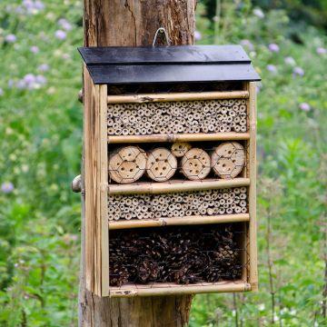 Höghus för insekter