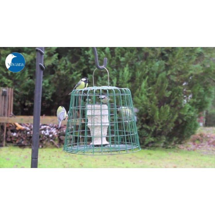 Fågelmatare för fettprodukter med skyddsbur