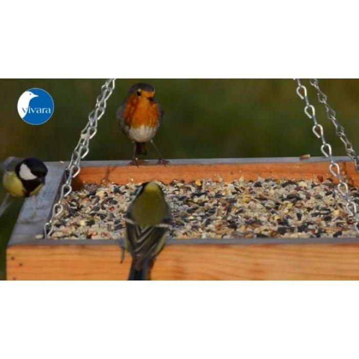 Fågelfrö Premium Vitalmix