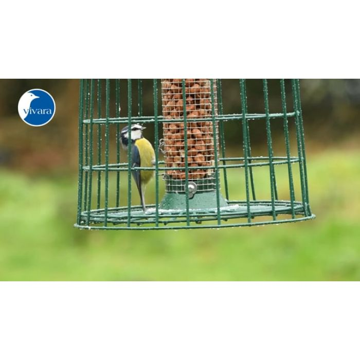 Skyddspaket med jordnötsautomat 38 cm