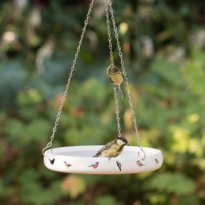 Fågelbad Trädgårdsfåglar