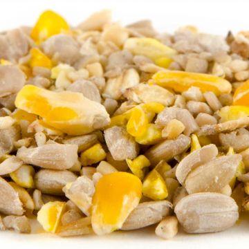 Premium foderblandning Plus