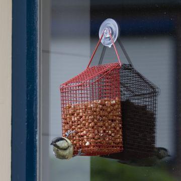 Fönsterkorg för jordnötter
