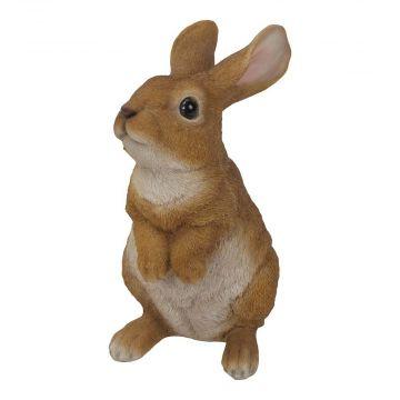 Kanin (stående på bakbenen)
