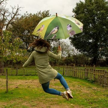 Paraply med småfåglar