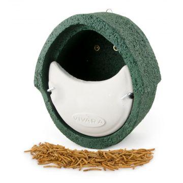 Fågelholk- paket WoodStone för rödhake
