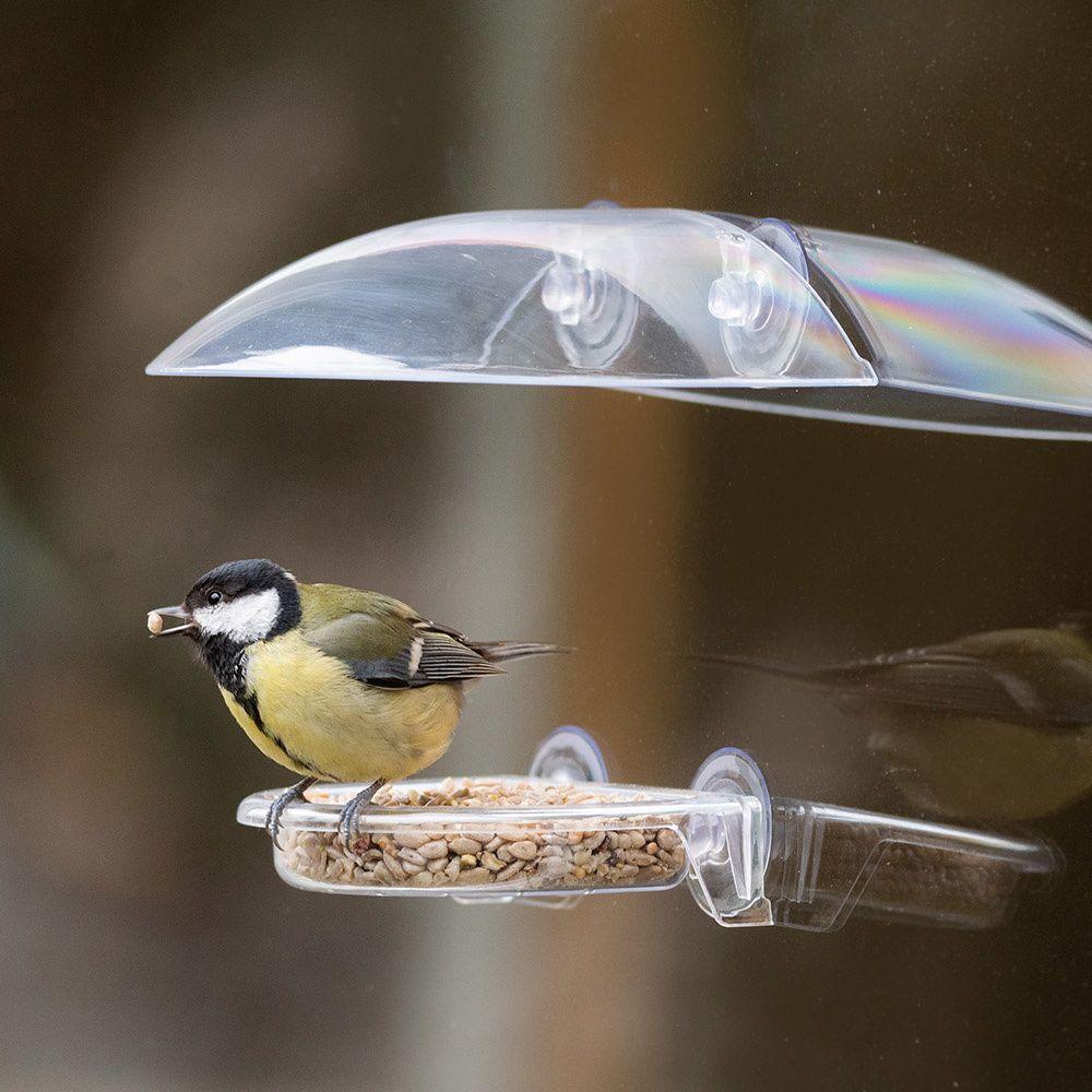 fågelmatare att sätta på fönstret