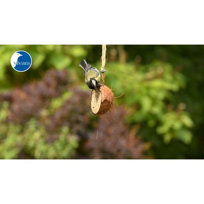 Kokosnöt med jordnötssmör