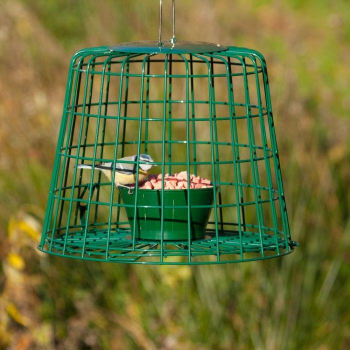 Skyddsbur för läckerbitar och mjölmask
