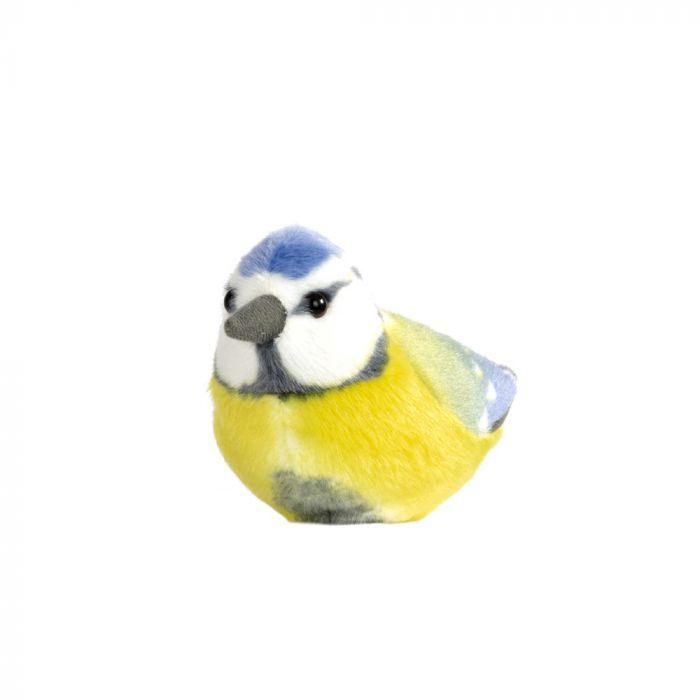 Blåmes Singing Bird