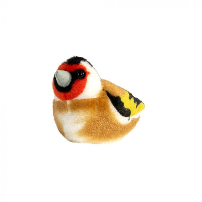 Steglits Singing Bird