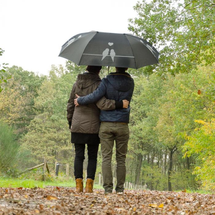 Duo-paraply Fågelsiluetter
