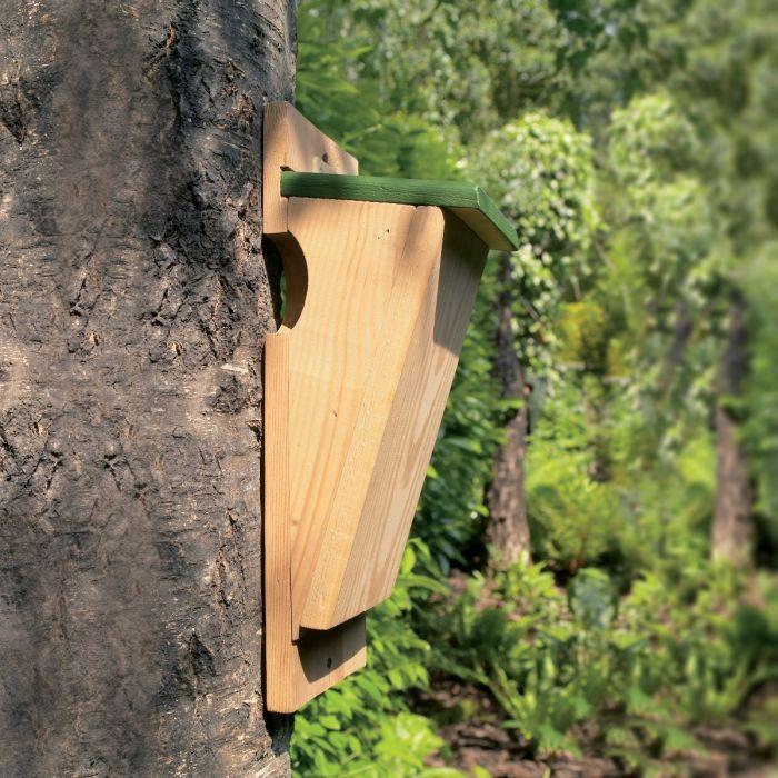 Fågelholk för trädkrypare halvöppen